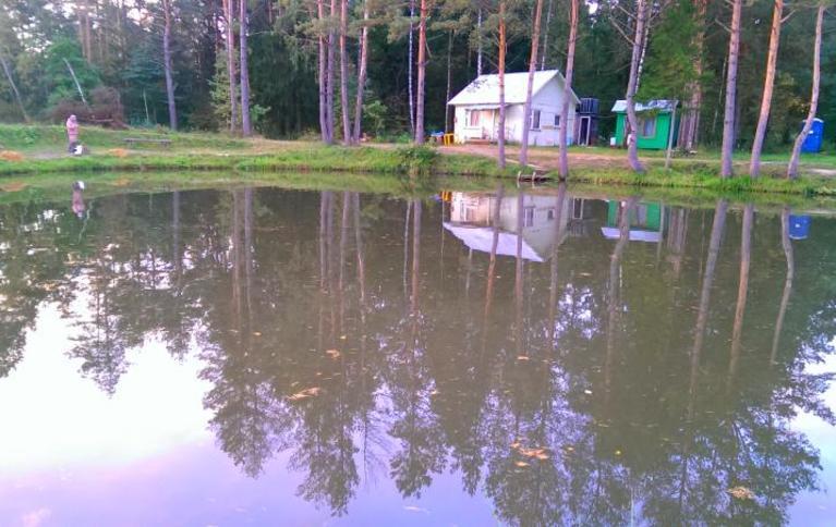 Платный пруд в Минино